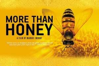 More than Honey / Bitterer Honig - kostenlos im Stream