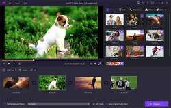 AnyMP4 Video Editor 1.0.8 gratis