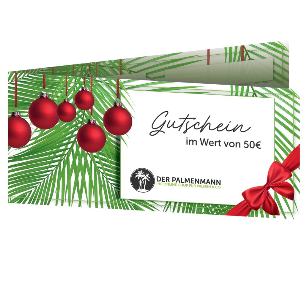 [palmenmann.de] 50€ Geschenkgutschein für 25€ (VSK kostenlos)