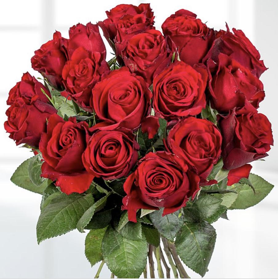 30% Rabatt auf ALLES bei Lidl-Blumen z.b. 18 langstielige Rosen für 13,99€ oder verschiedene Sträuße ab 10,49€ inkl. Versandkosten