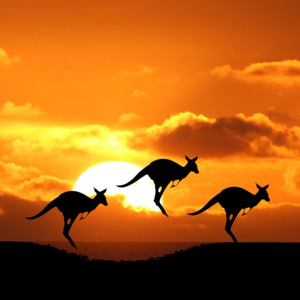 Flüge nach Australien und Neuseeland (Sydney, Brisbane, Auckland, Melbourne, Perth) ab 571€ inkl. Gepäck Hin und Zurück von Amsterdam