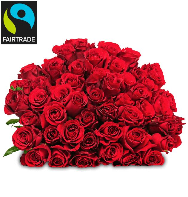33 rote FAIRTRADE Rosen