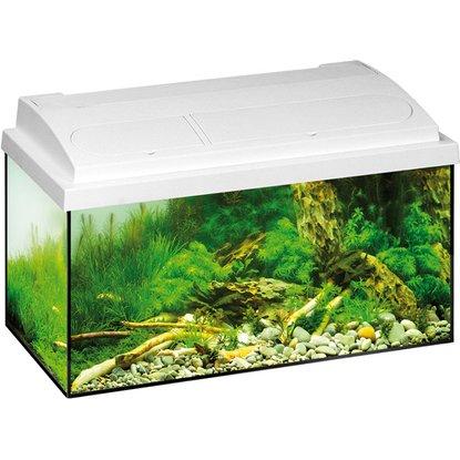 [OBI lokal] Eheim Aquastar 54 Aquarium