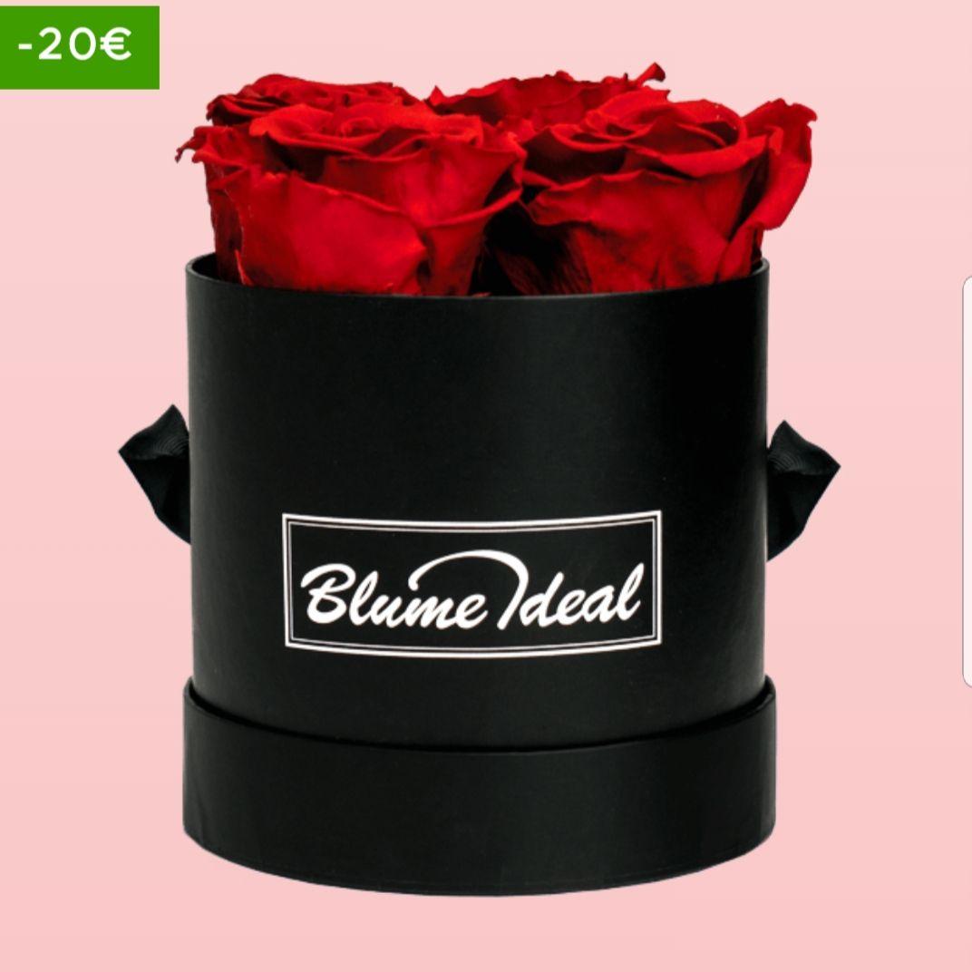 Rosenbox Lovely Valentine + Shoop