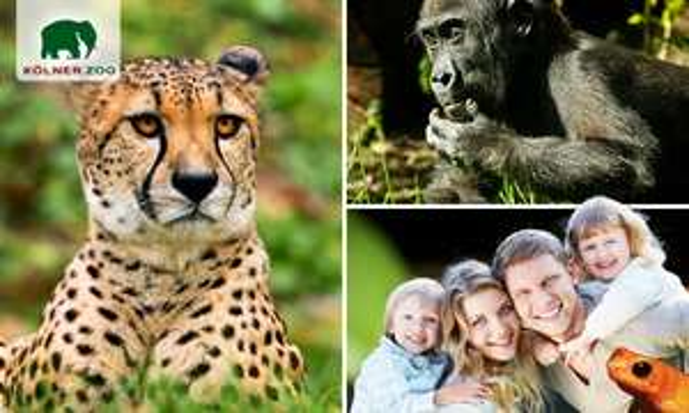 Socialdeal:Kölner Zoo Tagesticket für 8,40€
