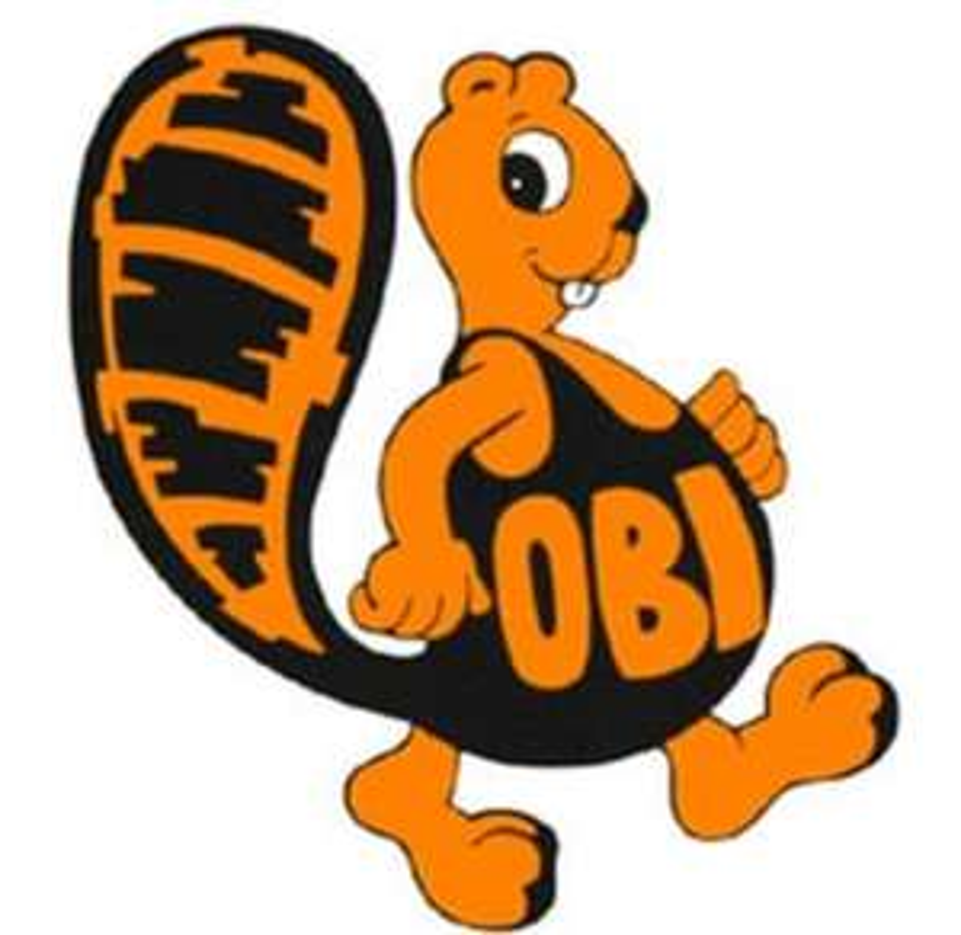 OBI Berlin 15% Rabatt mit Coupon am 27.01.19 von 13-18 Uhr