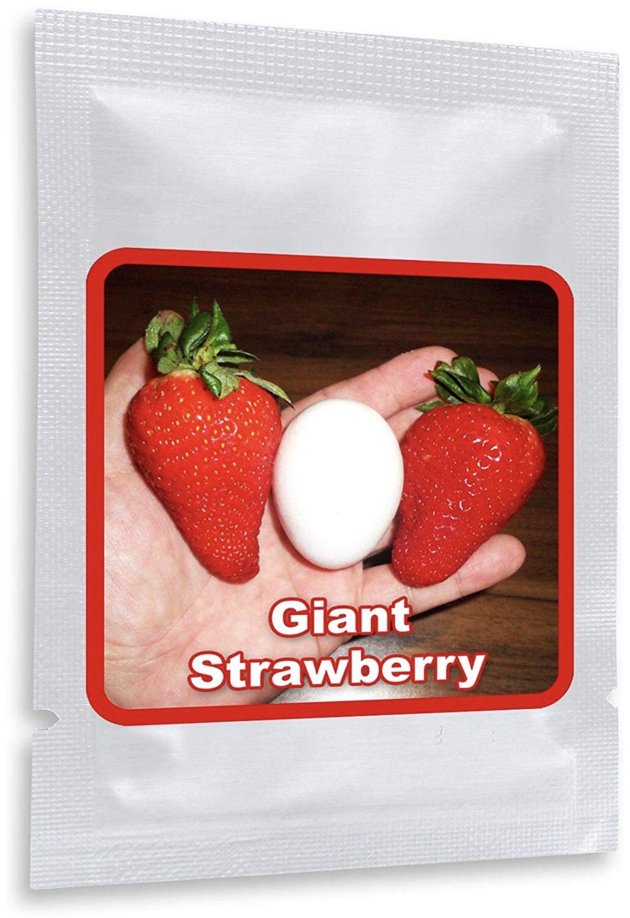[Amazon.de] Riesen Erdbeeren ca. 100 Samen