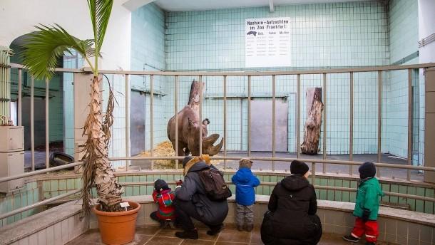"""[Frankfurt] Kinder & Jugendliche aus """"armen"""" Familien mit weniger als 4500 € netto im Monat (!)  kommen kostenlos in 30 Museen & in den Zoo"""