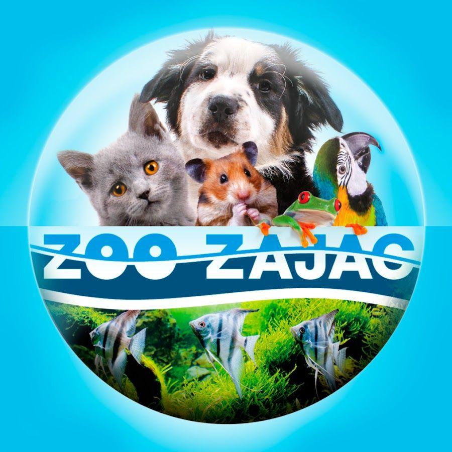 10% Rabatt im Online-Shop von Zoo Zajac bei Zahlung mit PayDirekt (denkt an die Best-Preis Garantie)