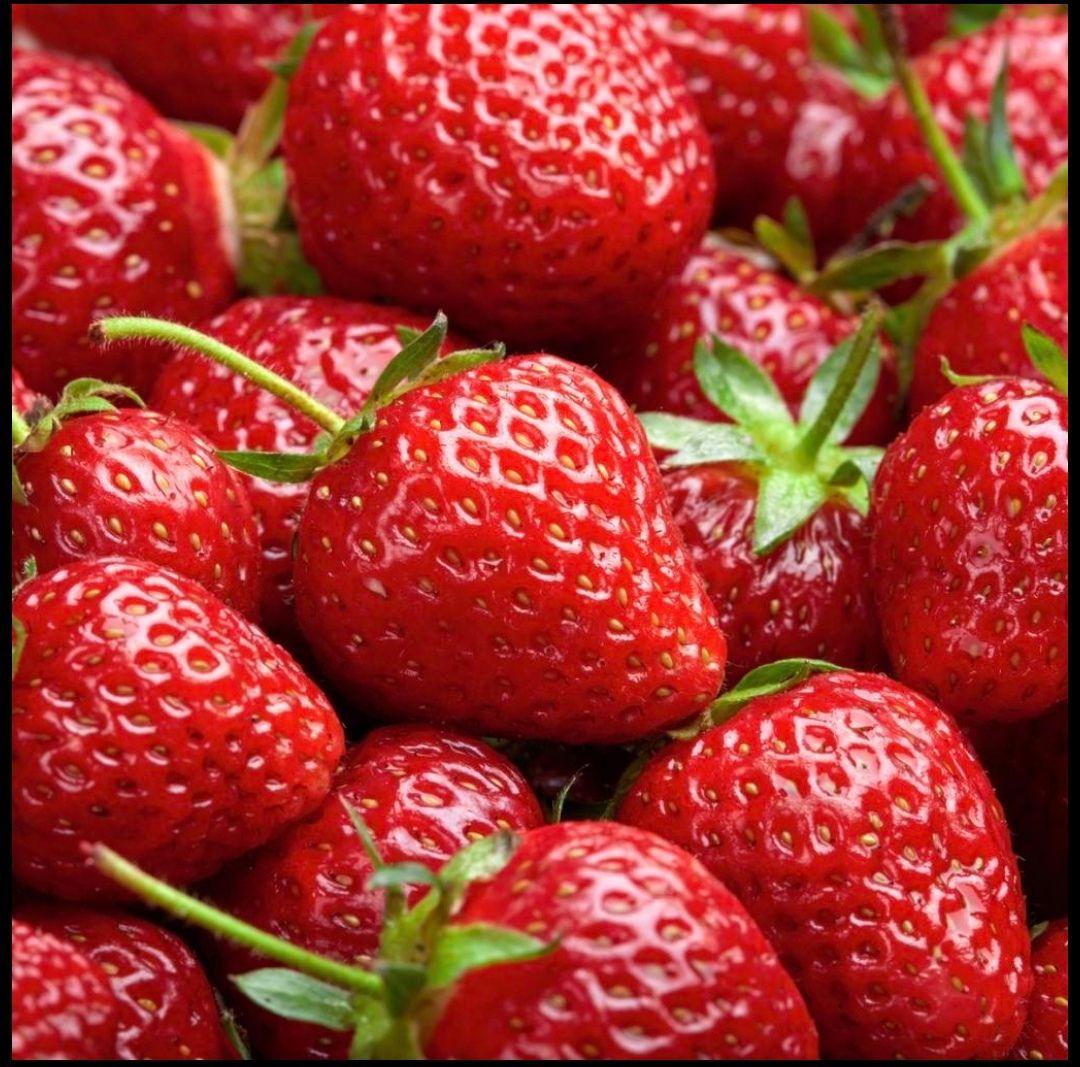 Erdbeeren Klasse I in der 500g Schale   für 0,99€ bei Lidl