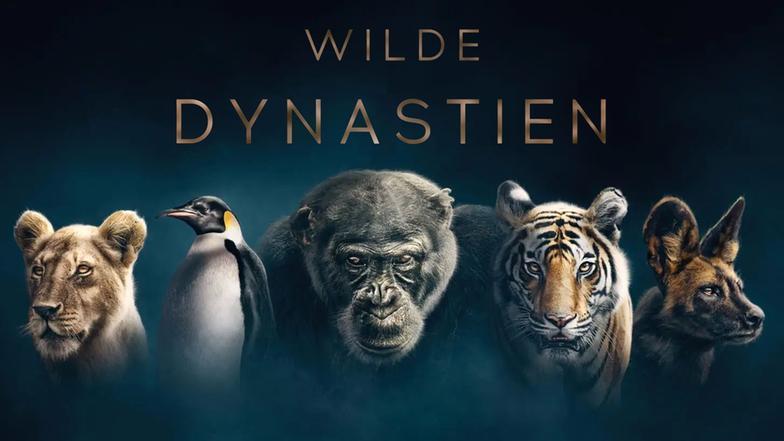 Wilde Dynastien (ARD- Mediathek, Online- Stream)