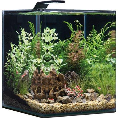 Dennerle NanoCube Basic 60L (Mini Aquarium)