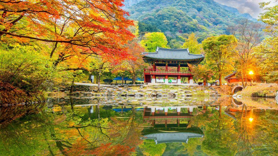 Flüge: Südkorea ( Nov - Dez ) Hin- und Rückflug von Frankfurt nach Seoul ab 354€ inkl. 2x23 Kg Gepäck