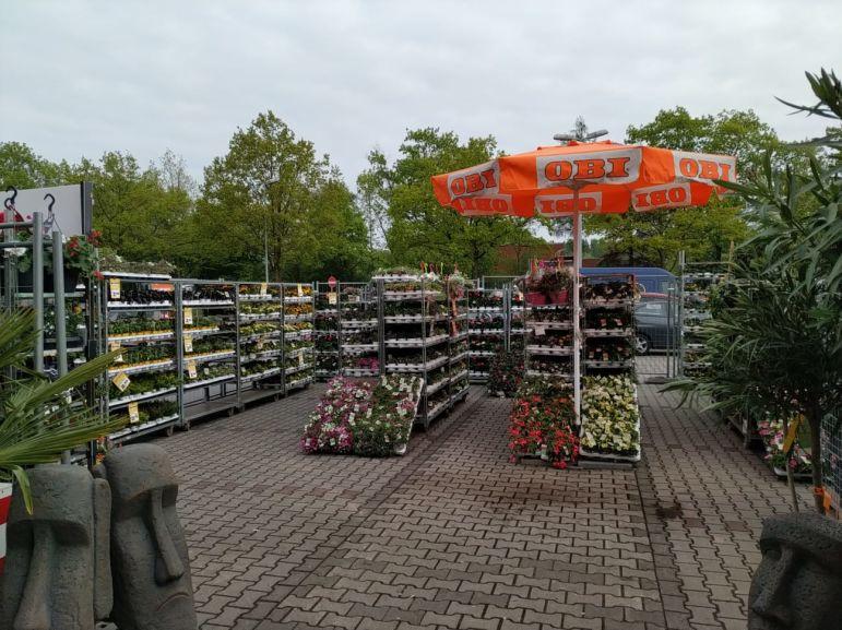 (LOKAL) Balkon- und Beetpflanzen bei OBI Bielefeld 50% reduziert
