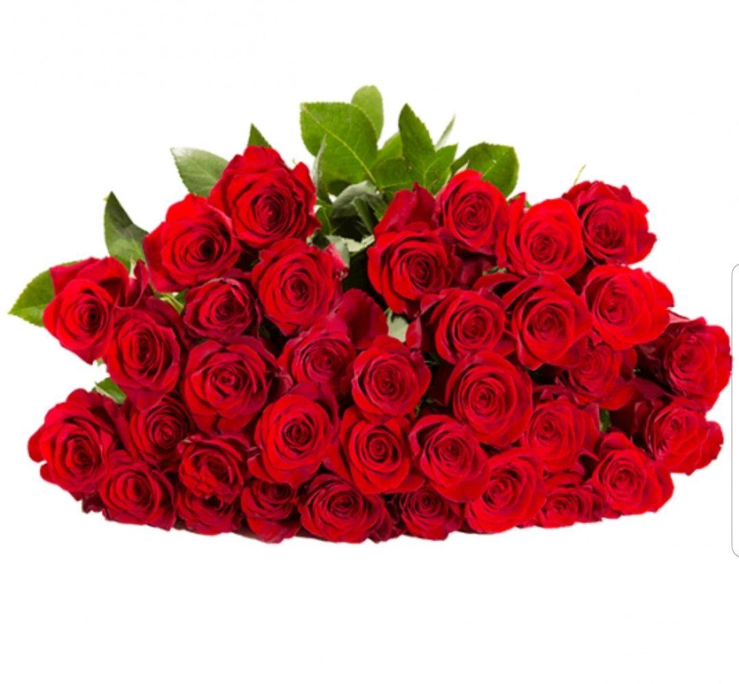 "[BlumenIdeal] 41 Rosen ""Classic Red"""
