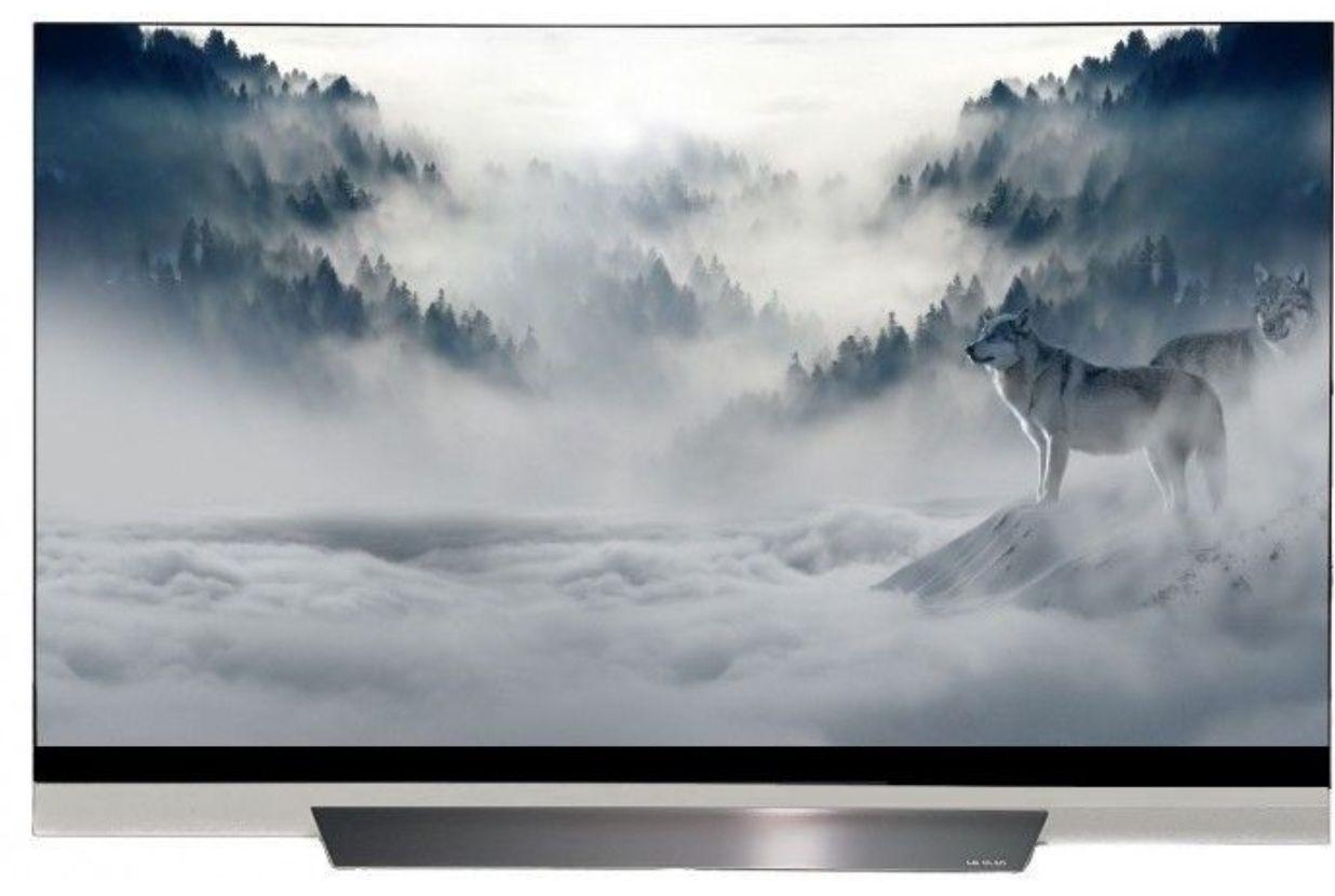 LG OLED65E8 OLED TV (Flat, 65 Zoll, UHD 4K, SMART TV, webOS)