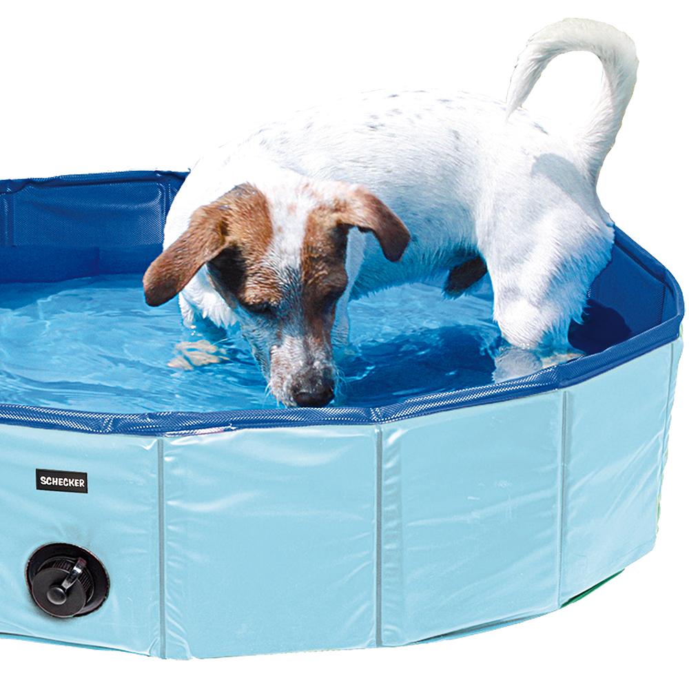 Schecker Doggy-Pool - Ein Spaß für jeden Vierbeiner