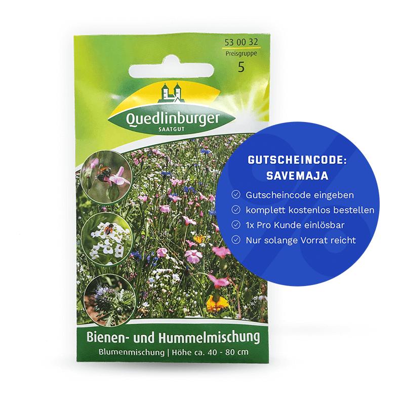 Quedlinburger Bienen- und Hummelmischung Saatgut (Freebie)