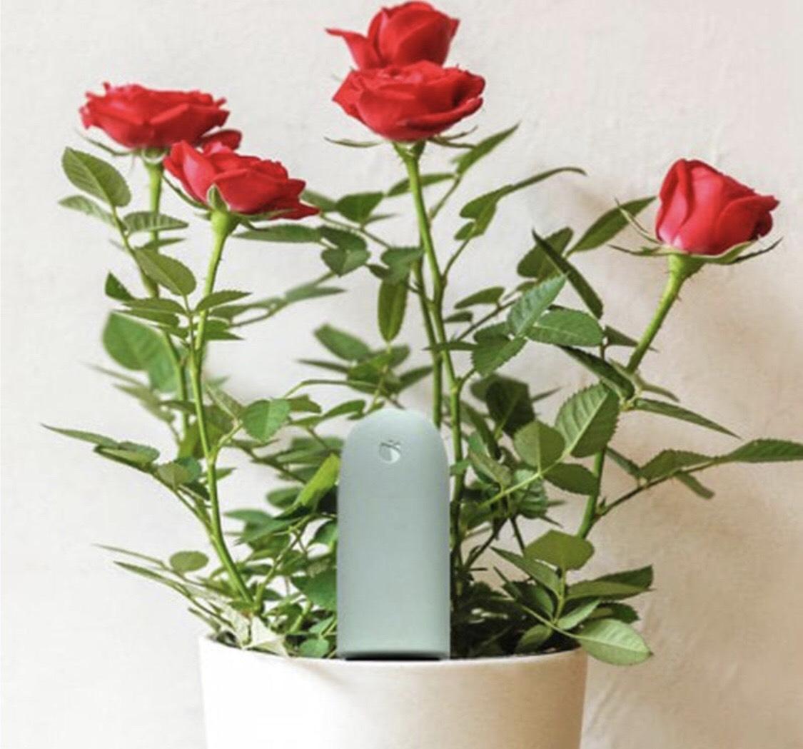 Flora 4 In 1 Flower Plant Light Temperature Tester Garden Soil Moisture Nutrient Monitor
