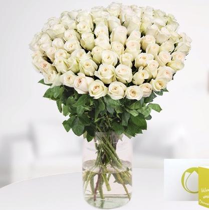 15€ Blumenshop.de Gutschein für 6€ bei Groupon