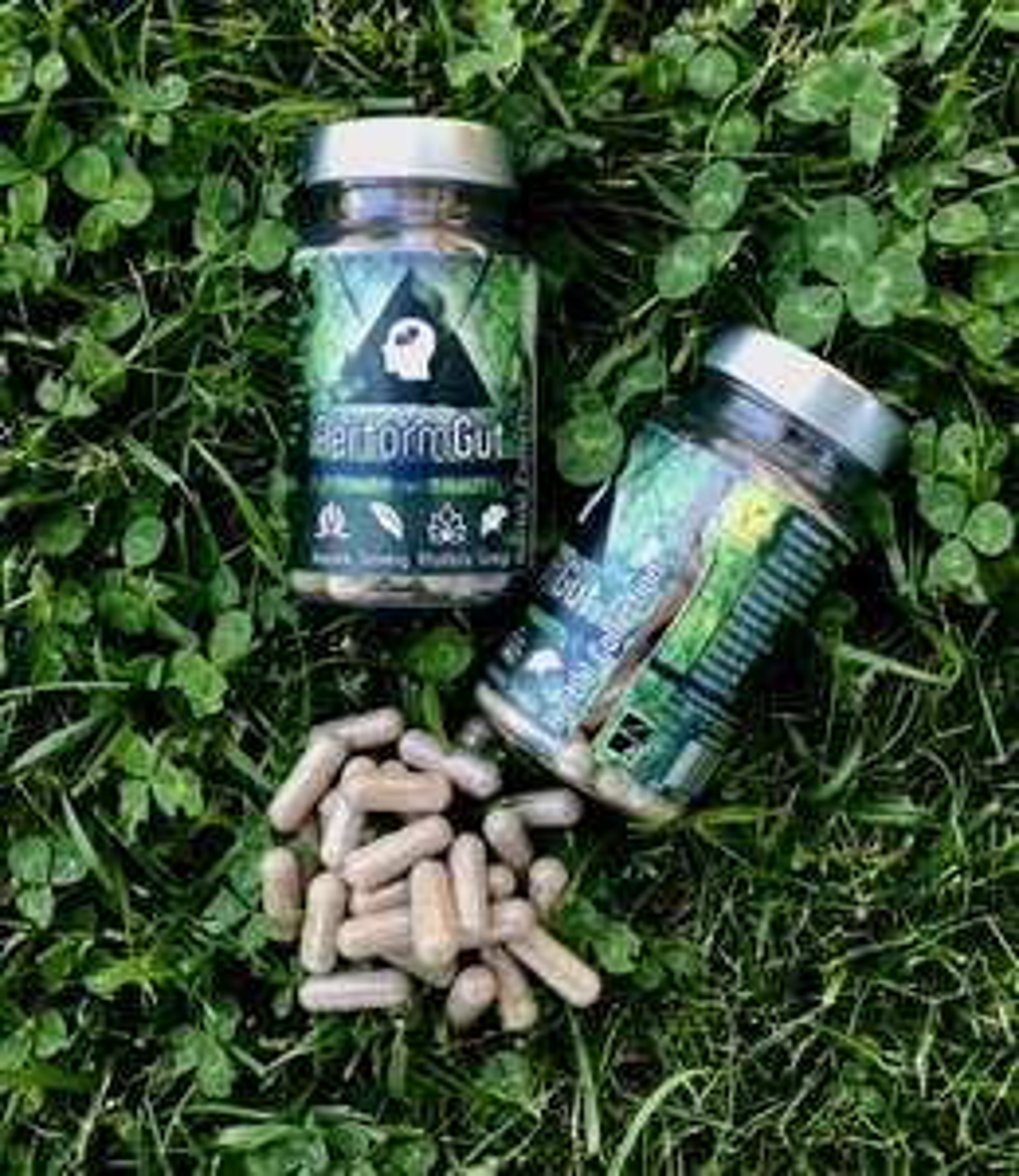 PerformGut (14,90€), Nahrungsergänzungsmittel Booster fürs Gedächtnis