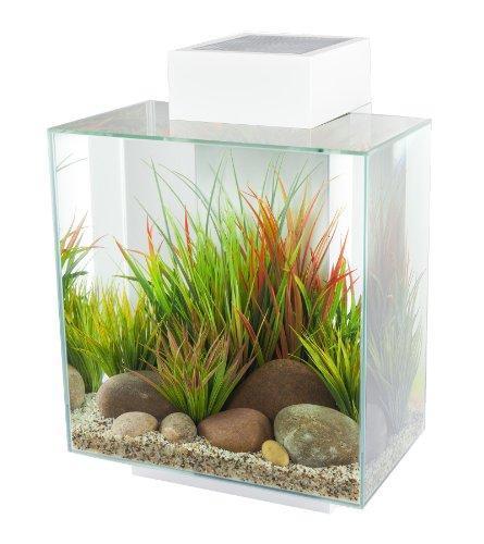 """[Update] Nano-Aquarium """"Fluval Edge II"""" bei Fressnapf für 116,10€"""