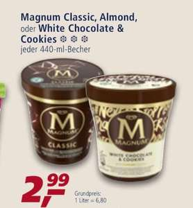 Magnum Pint/Becher White Chocolate & Cookies/Classic/Almond
