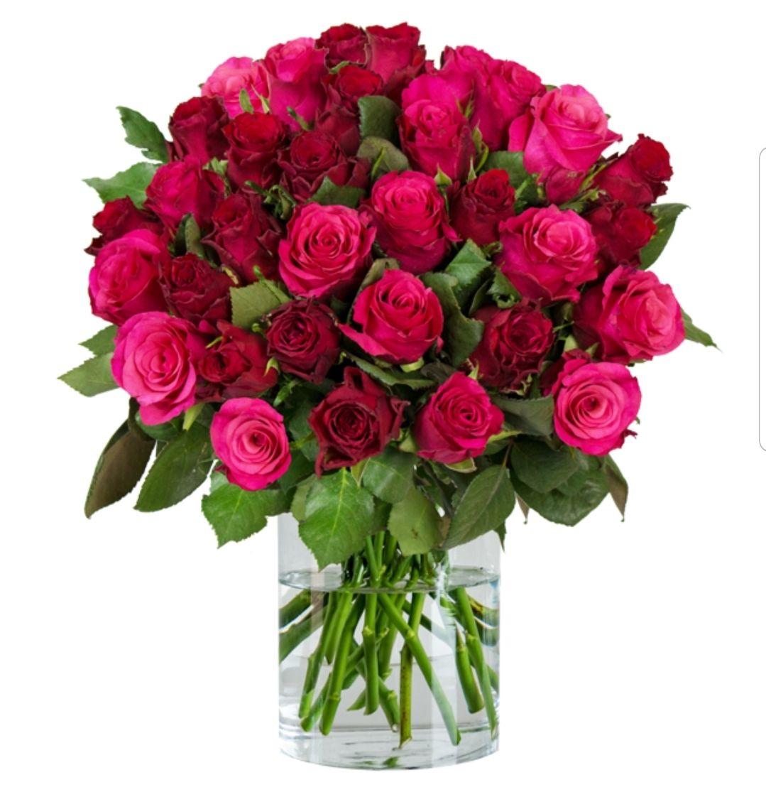 37 RomanticRoses bei Blumeideal für 19.99€ + 4.99€ Versand und Shoop