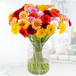 Blumenstrauß mit 40 bunten Gerbera und Grußkarte