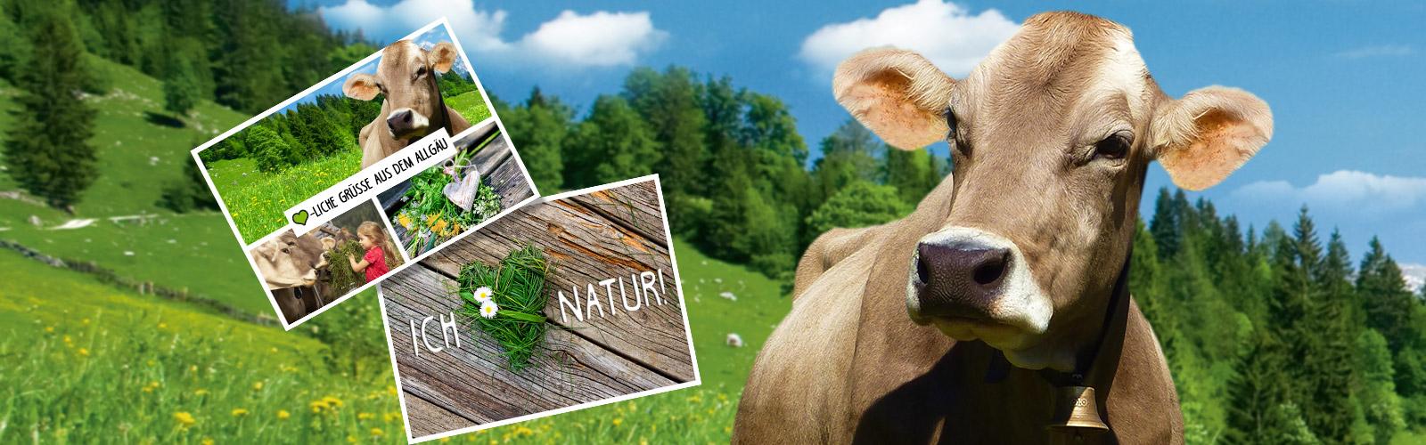 3€ Code für mypostcard um eine Gratis Postkarte zu versenden (Milkana Aktion)