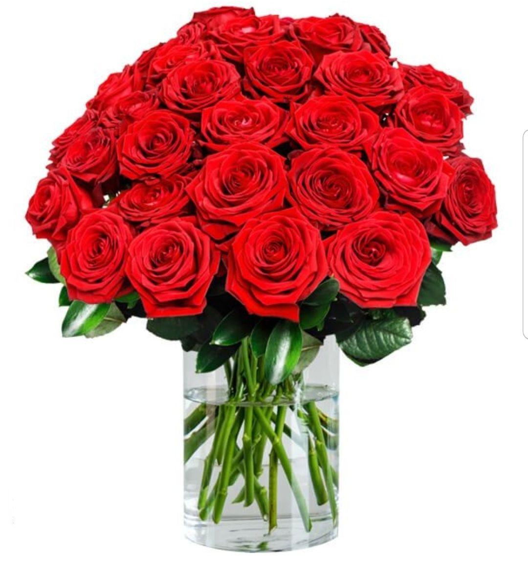 [BlumeIdeal] 5€ Gutschein - MBW 19.95€ / z.B. 30 rote Premium Rosen für 29,98€