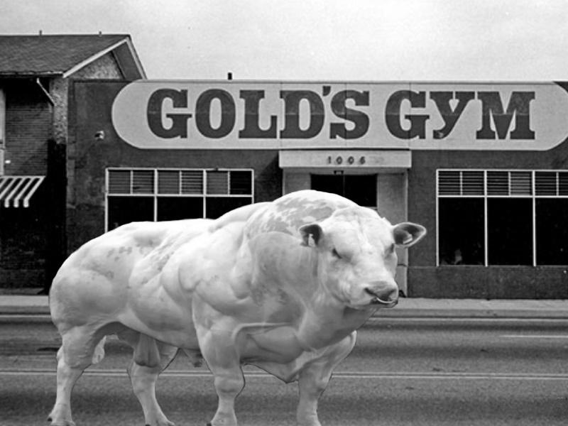 """""""Pumpermarkt"""" [KW36]: z.B. 400g Rinder-Hackfleisch mit 5% Fett für 2,29€ (5,73€/kg) bei Aldi Süd"""