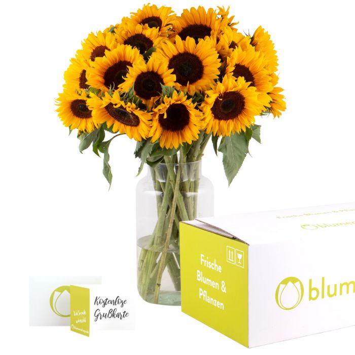 20 Sonnenblumen (Stiellänge: 60cm)  inkl. Grußkarte