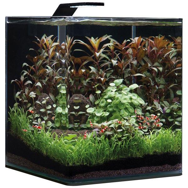 Dennerle NanoCube Basic Style LED 30 Liter Aquarium