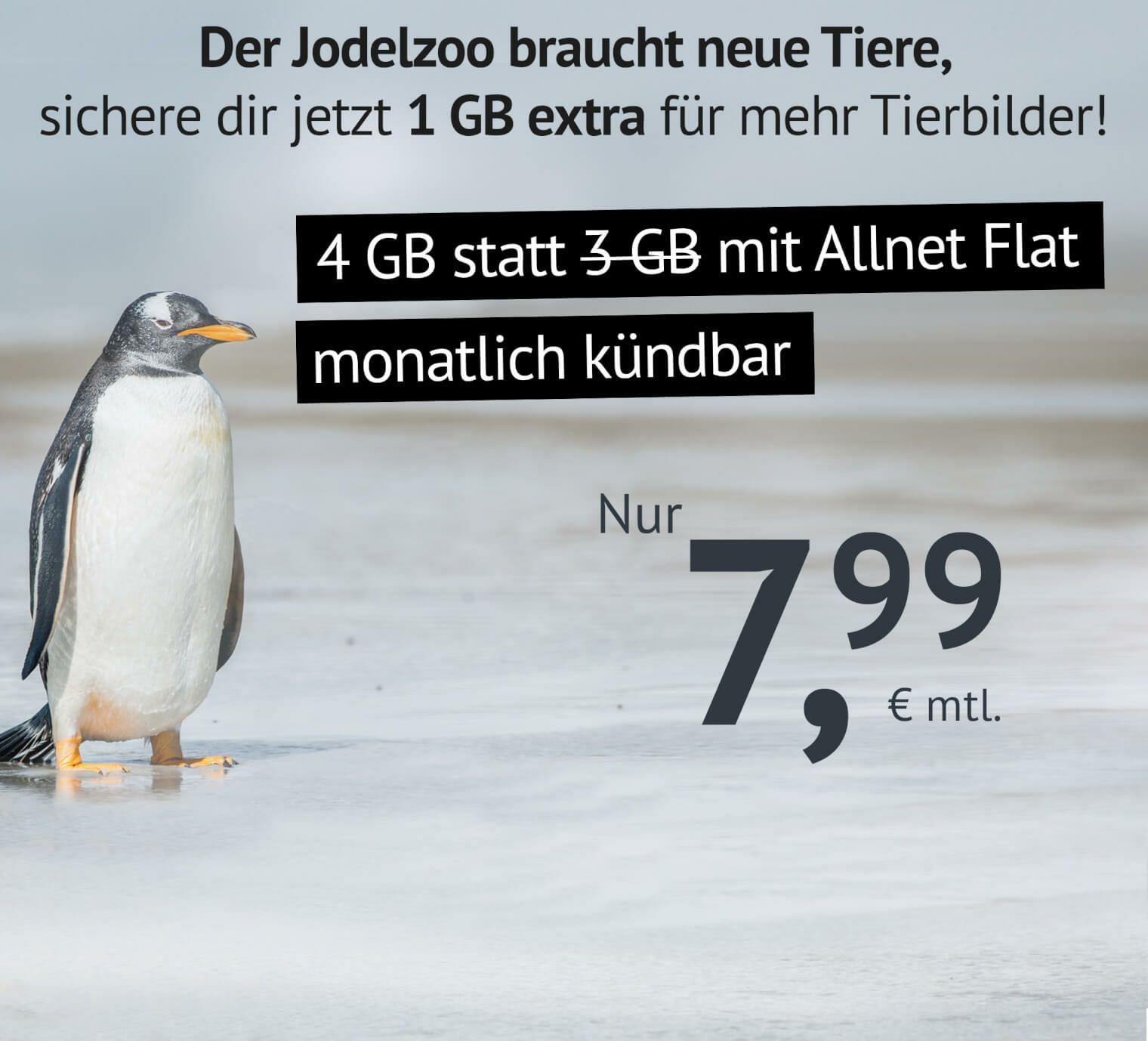 4 GB LTE, Allnet- & SMS-Flat, monatl. kündbar: 7,99€ [o2-Netz]