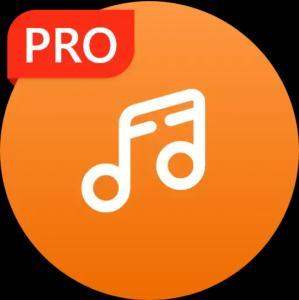 Google Play Store (ANDROID) Musikspieler pro für lau (kostenlos)