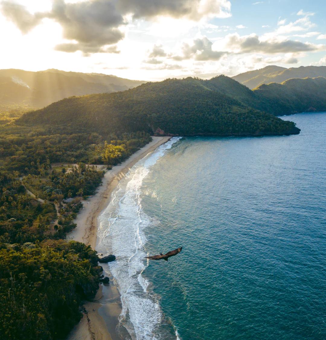 Flüge: Punta Cana / Dominikanische Republik ( Sept-Okt ) Nonstop Hin und Rückflug von Brüssel ab 255€