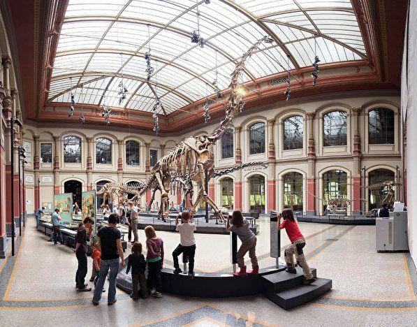 [Berlin] freier Eintritt ins Naturkundemuseum nur am 20.09.!