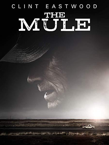 [CHILI] Bis zu 3 Filme für je 1,90 Euro streamen (Auswahl: z.B. The Mule, Der Junge muss an die frische Luft,...)