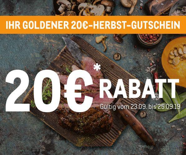 Metro - 20 Euro ab 100 - Goldener Herbst Gutschein
