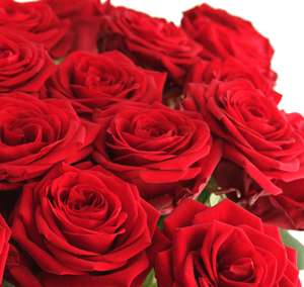 30 Red Naomi Rosen mit 50cm Stiellänge inkl. Versandkosten bei [Blume Ideal]