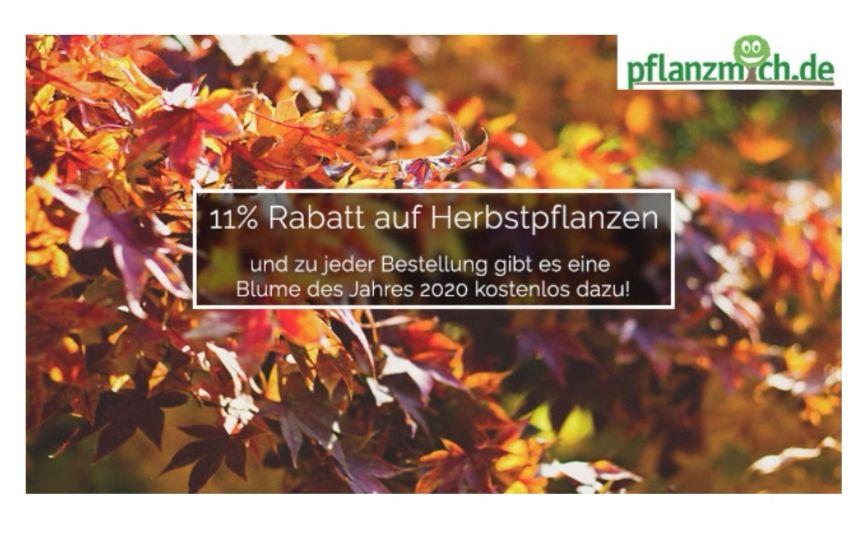11% Rabatt + Gratispflanze bei pflanzmich.de