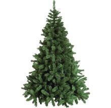 HORNBACH - Weihnachtsbäume und -schmuck 50 % reduziert