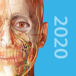 Atlas der Humananatomie 2020 / Muscle Premium und Anatomie & Physiologie für je 1,09€ (iOS + Android)