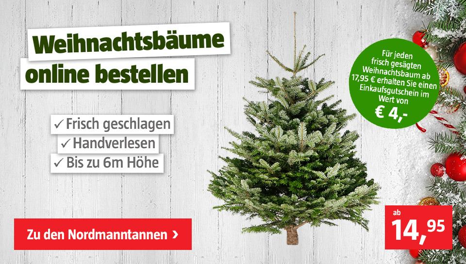 (Bauhaus) Tannenbaum kaufen und 4€ Gutschein erhalten