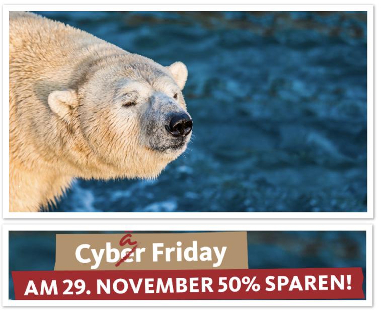 Cybär Friday im Zoo Hannover: 50% Rabatt auf Tageskarten (bis 31.12. gültig) - am 29.11.