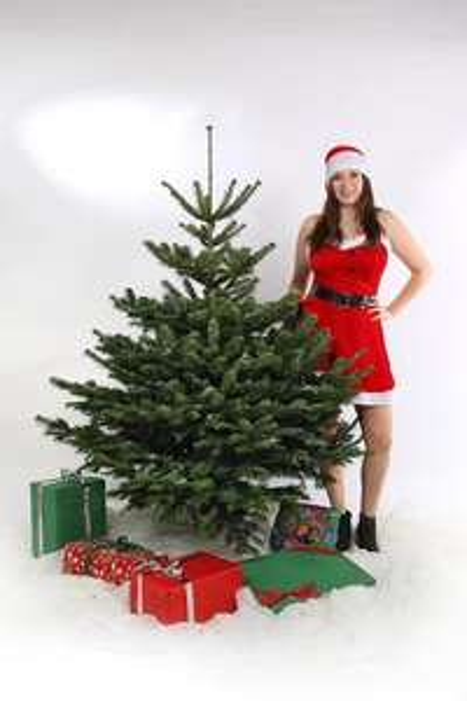 10% auf alle Weihnachtsbäume und Gutscheine