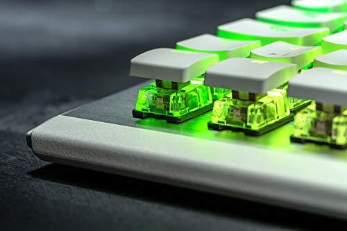 ROCCAT AIMO 122 Tastatur