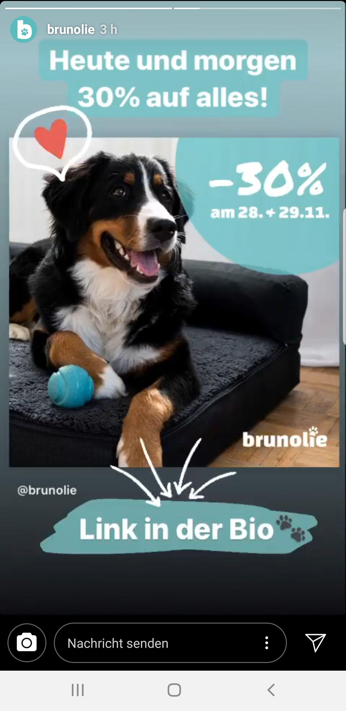 30% Rabatt auf alles (Hundebetten, Hundesofas)