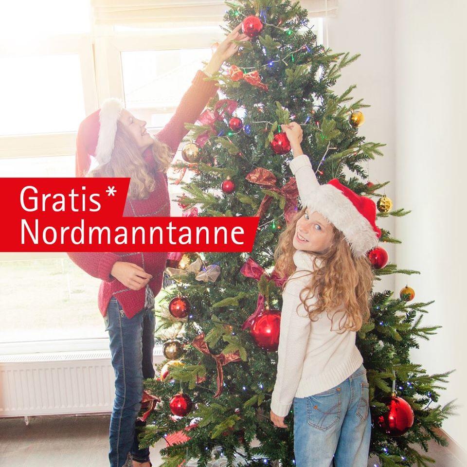 (Oldenburg Holzland Vogt) Gratis Nordmanntanne bei Gutscheinkauf 1m-2,x m